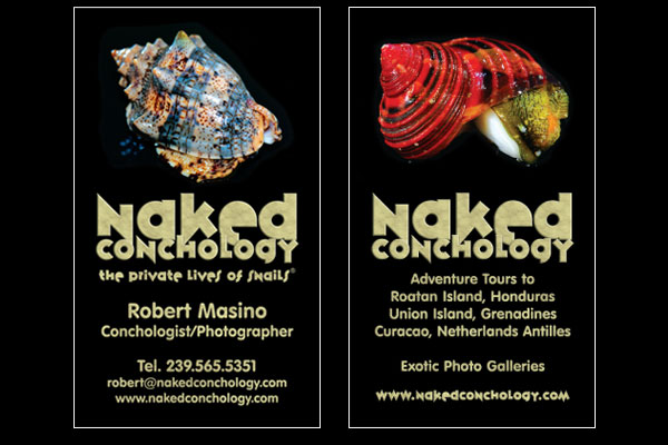Naked Conchology